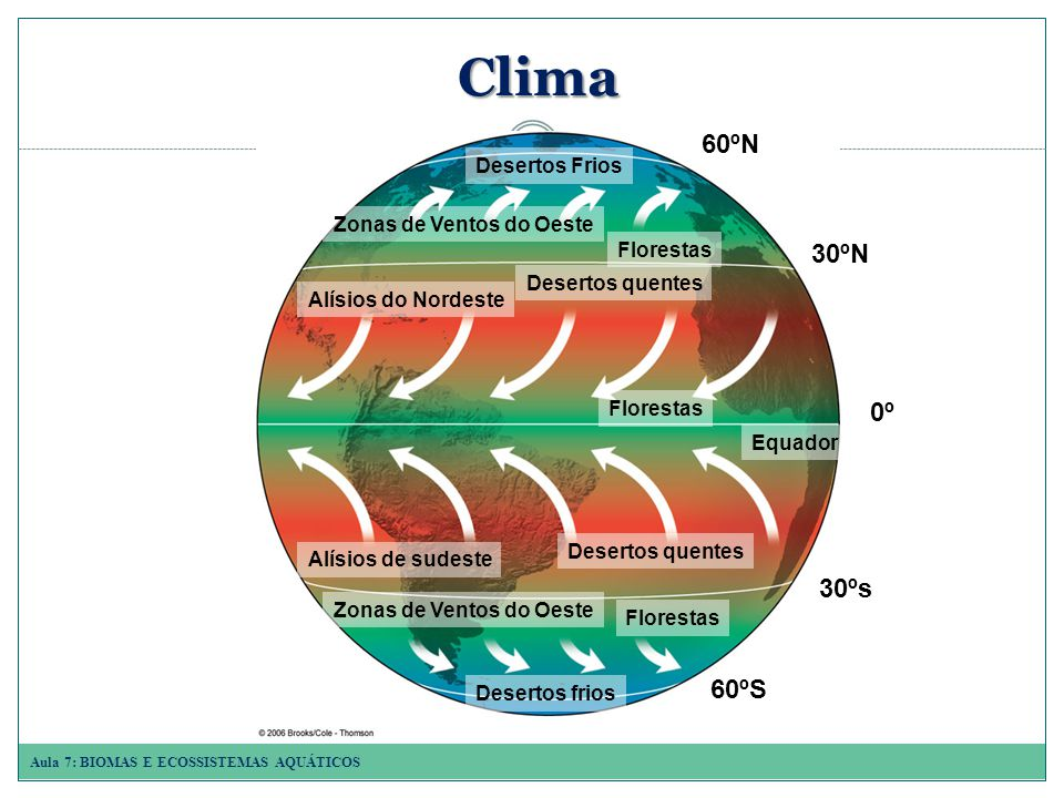 Aula 7: BIOMAS E ECOSSISTEMAS AQUÁTICOS Clima 60ºN 30ºN 0º 30ºs 60ºS Desertos Frios Florestas Desertos quentes Zonas de Ventos do Oeste Equador Florestas Alísios de sudeste Alísios do Nordeste Desertos frios Florestas Desertos quentes Zonas de Ventos do Oeste