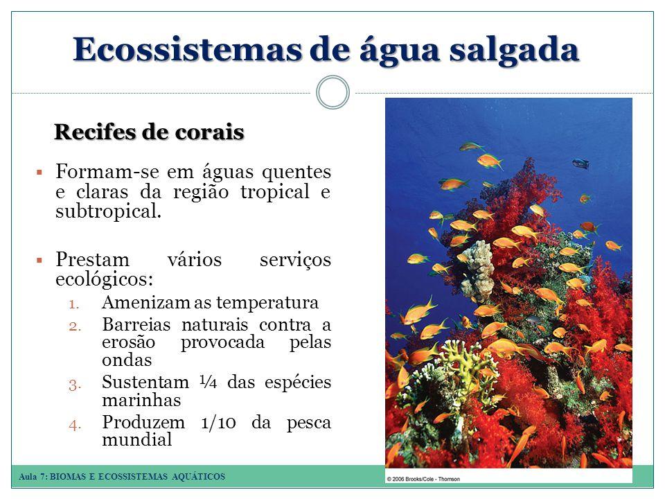 Aula 7: BIOMAS E ECOSSISTEMAS AQUÁTICOS Ecossistemas de água salgada Recifes de corais Formam-se em águas quentes e claras da região tropical e subtropical.