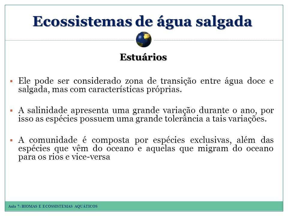 Aula 7: BIOMAS E ECOSSISTEMAS AQUÁTICOS Ecossistemas de água salgada Estuários Ele pode ser considerado zona de transição entre água doce e salgada, mas com características próprias.