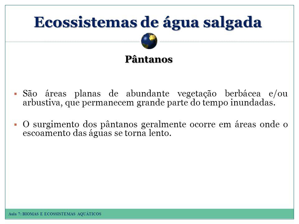 Ecossistemas de água salgada Pântanos São áreas planas de abundante vegetação berbácea e/ou arbustiva, que permanecem grande parte do tempo inundadas.