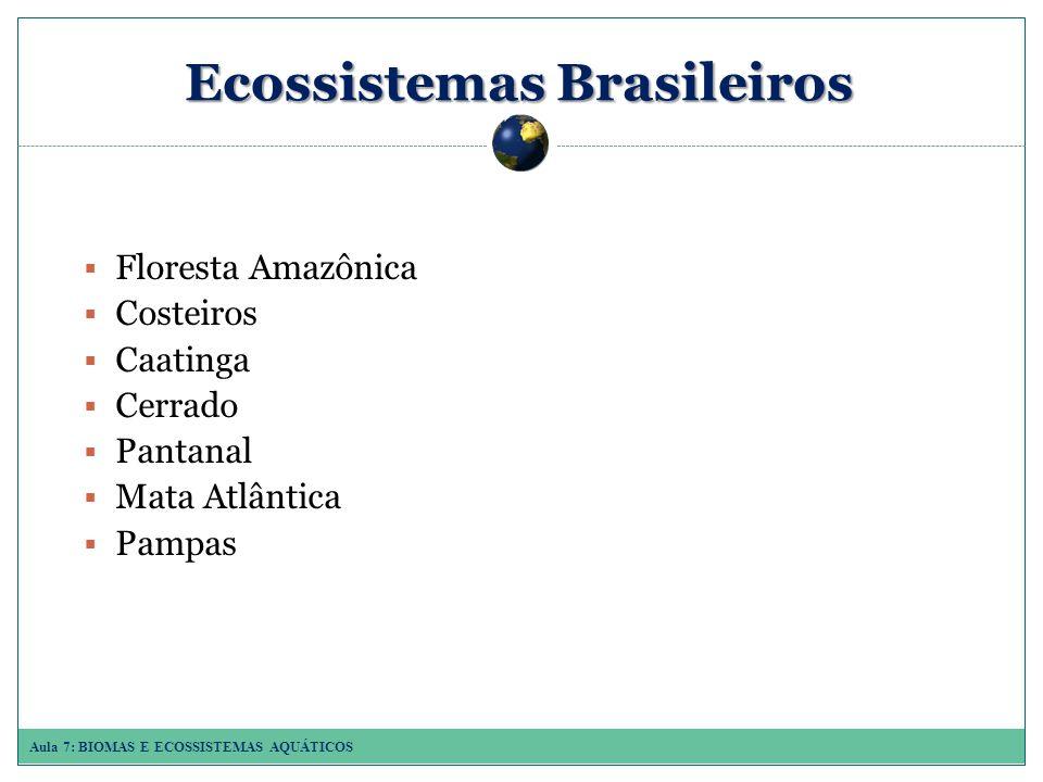 Aula 7: BIOMAS E ECOSSISTEMAS AQUÁTICOS Ecossistemas Brasileiros Floresta Amazônica Costeiros Caatinga Cerrado Pantanal Mata Atlântica Pampas