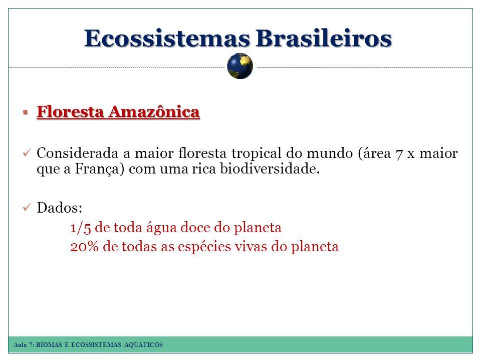 Aula 7: BIOMAS E ECOSSISTEMAS AQUÁTICOS Ecossistemas Brasileiros Floresta Amazônica Floresta Amazônica Considerada a maior floresta tropical do mundo (área 7 x maior que a França) com uma rica biodiversidade.