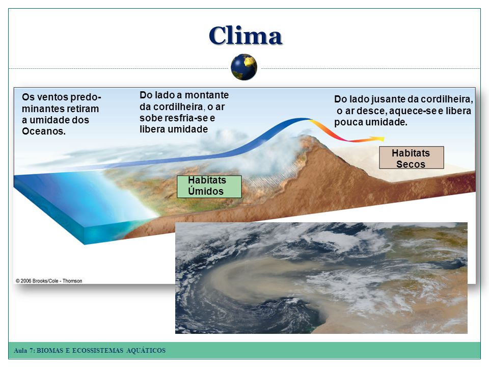 Aula 7: BIOMAS E ECOSSISTEMAS AQUÁTICOS Principais biomas terrestres Campos polar ou tundra