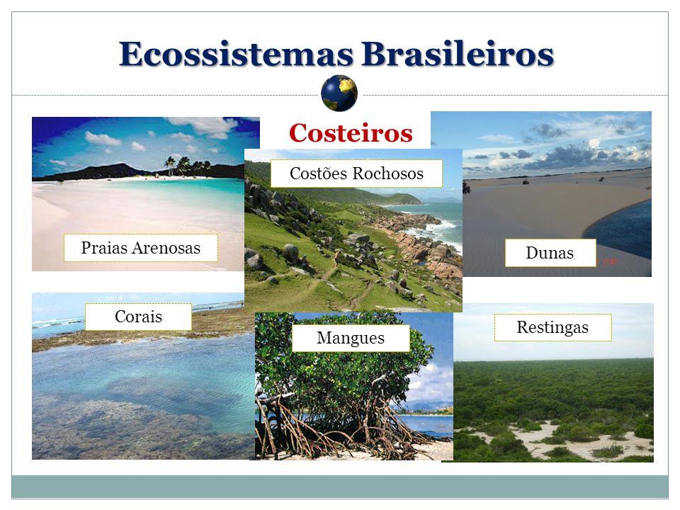 Costeiros Mangues Corais Dunas Restingas Praias Arenosas Costões Rochosos Ecossistemas Brasileiros