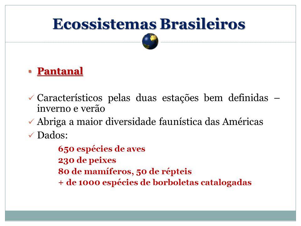 Pantanal Pantanal Característicos pelas duas estações bem definidas – inverno e verão Abriga a maior diversidade faunística das Américas Dados: 650 espécies de aves 230 de peixes 80 de mamíferos, 50 de répteis + de 1000 espécies de borboletas catalogadas Ecossistemas Brasileiros
