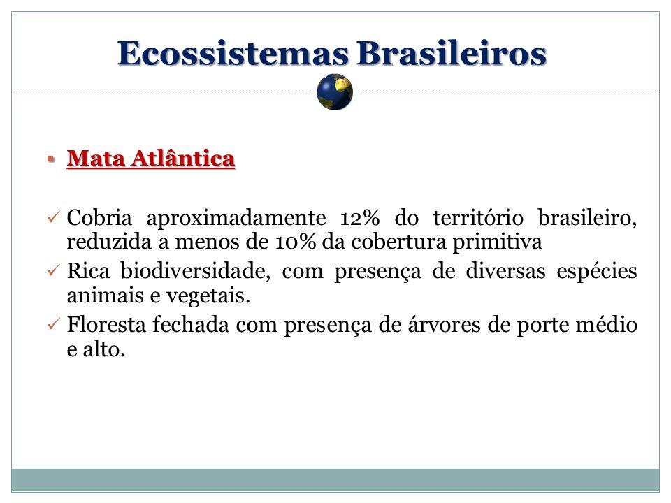 Mata Atlântica Mata Atlântica Cobria aproximadamente 12% do território brasileiro, reduzida a menos de 10% da cobertura primitiva Rica biodiversidade, com presença de diversas espécies animais e vegetais.