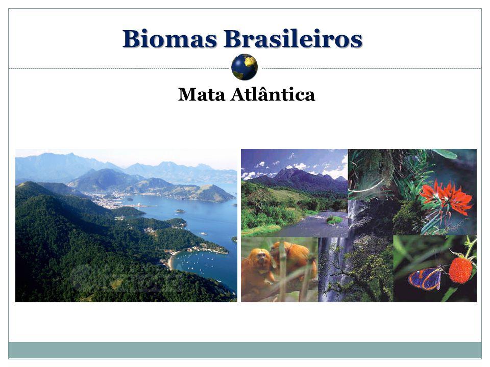 Mata Atlântica Biomas Brasileiros