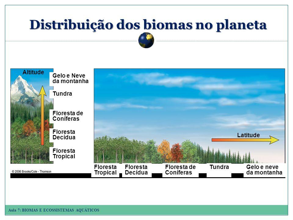 Aula 7: BIOMAS E ECOSSISTEMAS AQUÁTICOS Principais biomas terrestres DESERTOS FRIOS DESERTOS FRIOS os invernos são frios, os verões são mornos ou quentes e a precipitação é baixa (Gobi, China).
