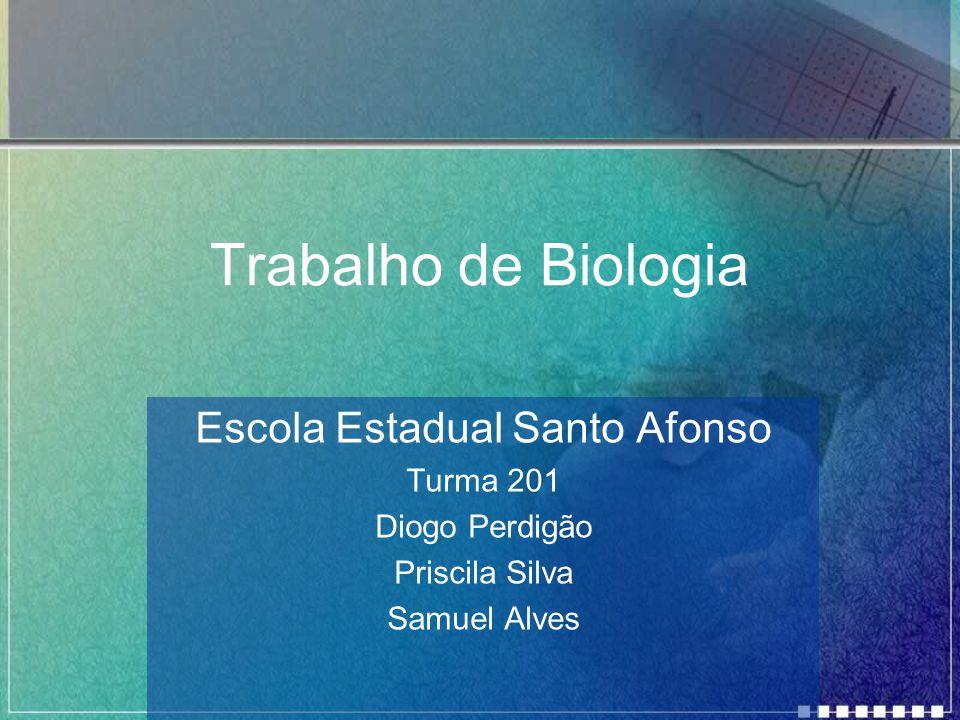 Trabalho de Biologia Escola Estadual Santo Afonso Turma 201 Diogo Perdigão Priscila Silva Samuel Alves