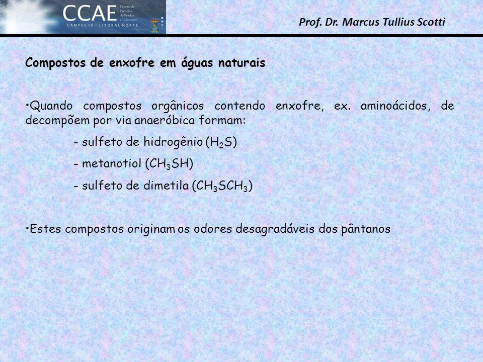 Prof. Dr. Marcus Tullius Scotti Compostos de enxofre em águas naturais Quando compostos orgânicos contendo enxofre, ex. aminoácidos, de decompõem por