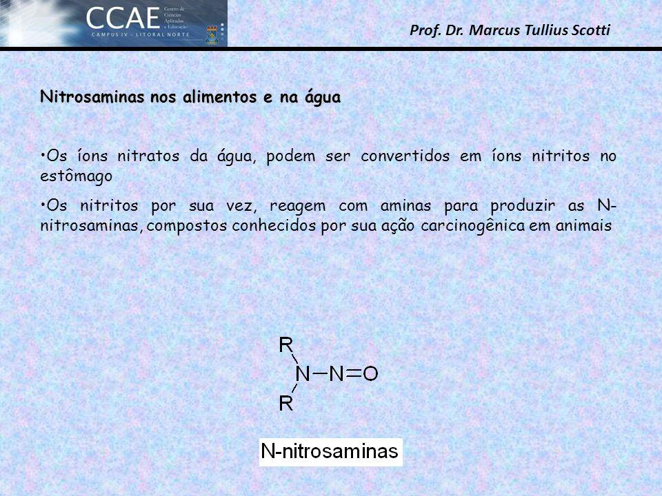 Prof. Dr. Marcus Tullius Scotti Nitrosaminas nos alimentos e na água Os íons nitratos da água, podem ser convertidos em íons nitritos no estômago Os n