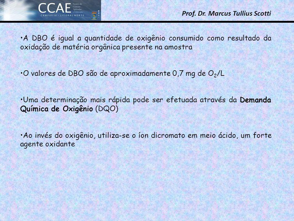 Prof. Dr. Marcus Tullius Scotti A DBO é igual a quantidade de oxigênio consumido como resultado da oxidação de matéria orgânica presente na amostra O