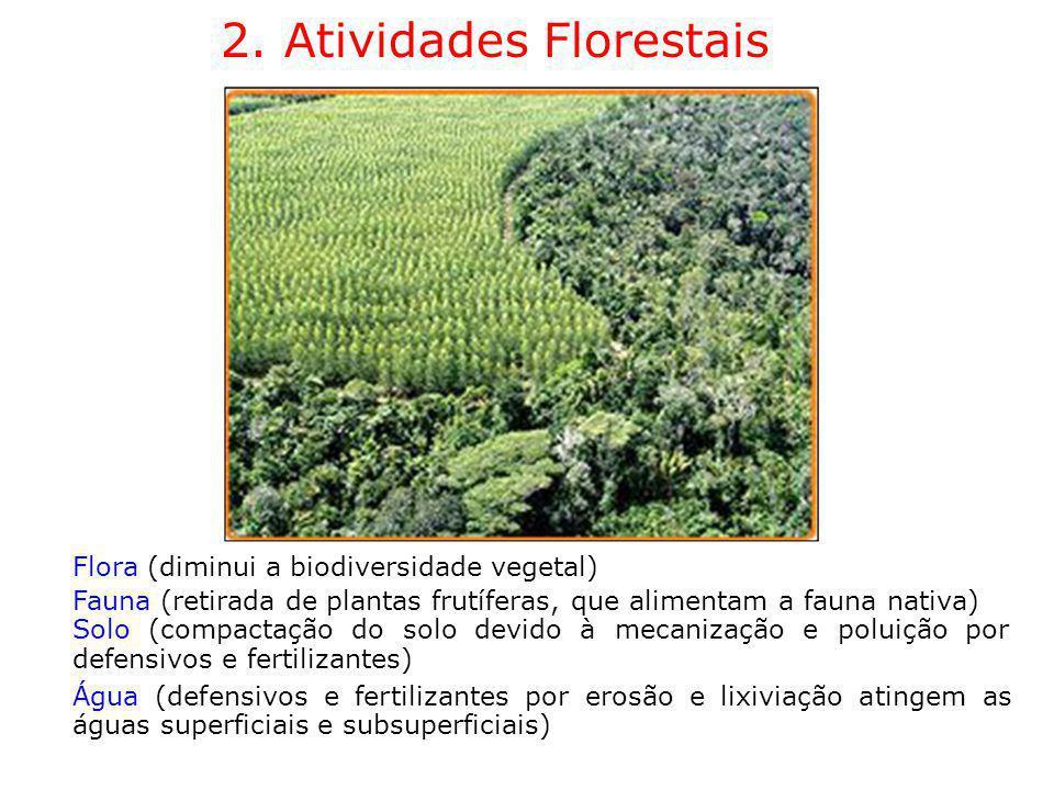 2. Atividades Florestais Flora (diminui a biodiversidade vegetal) Fauna (retirada de plantas frutíferas, que alimentam a fauna nativa) Solo (compactaç