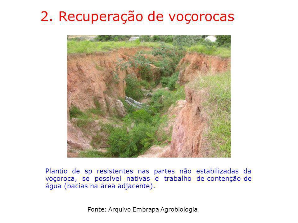 2. Recuperação de voçorocas Plantio de sp resistentes nas partes não estabilizadas da voçoroca, se possível nativas e trabalho de contenção de água (b