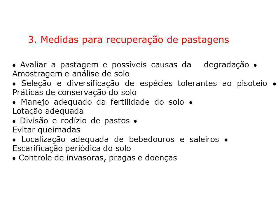3. Medidas para recuperação de pastagens Avaliar a pastagem e possíveis causas da degradação Amostragem e análise de solo Seleção e diversificação de