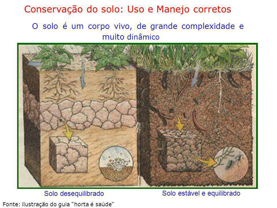 Conservação do solo: Uso e Manejo corretos O solo é um corpo vivo, de grande complexidade e muito dinâmico Solo desequilibrado Solo estável e equilibr