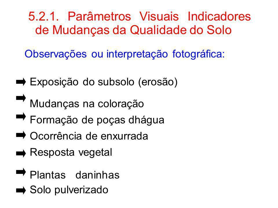 5.2.1. Parâmetros Visuais Indicadores de Mudanças da Qualidade do Solo Observações ou interpretação fotográfica: Exposição do subsolo (erosão) Mudança