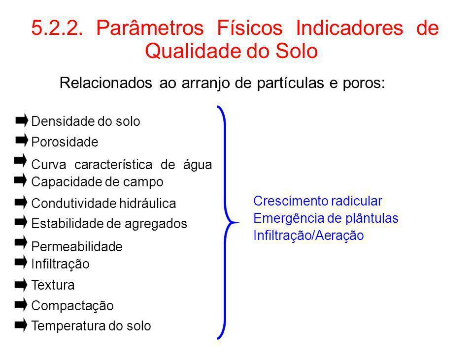 5.2.2. Parâmetros Físicos Indicadores de Qualidade do Solo Relacionados ao arranjo de partículas e poros: Densidade do solo Porosidade Curva caracterí
