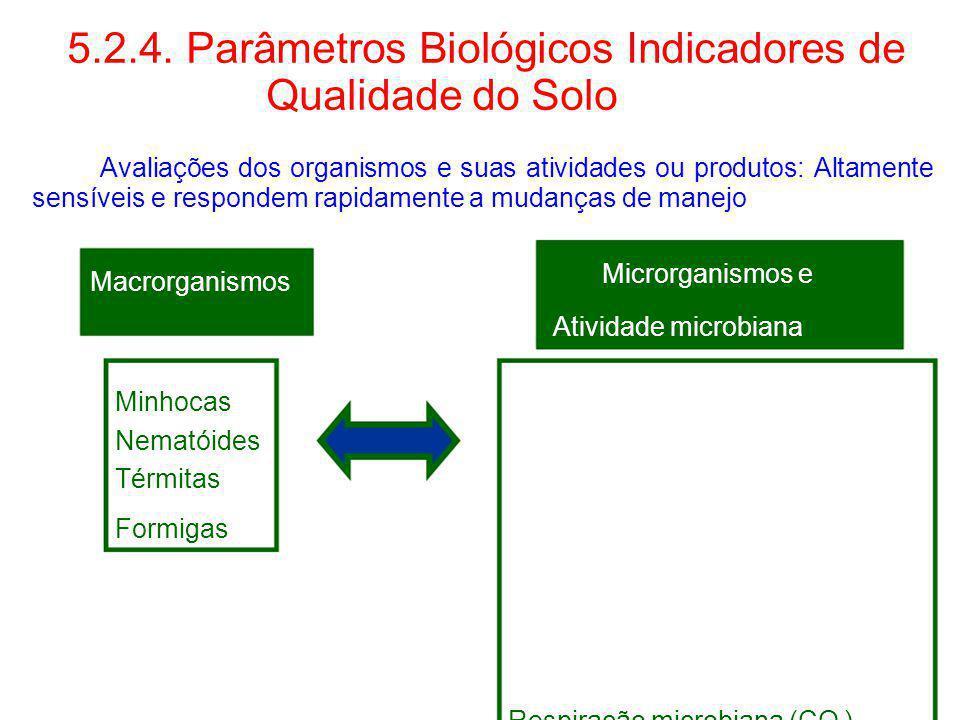 5.2.4. Parâmetros Biológicos Indicadores de Qualidade do Solo Avaliações dos organismos e suas atividades ou produtos: Altamente sensíveis e respondem