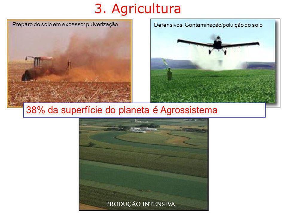 3. Agricultura Preparo do solo em excesso: pulverização Defensivos: Contaminação/poluição do solo 38% da superfície do planeta é Agrossistema PRODUÇÃO