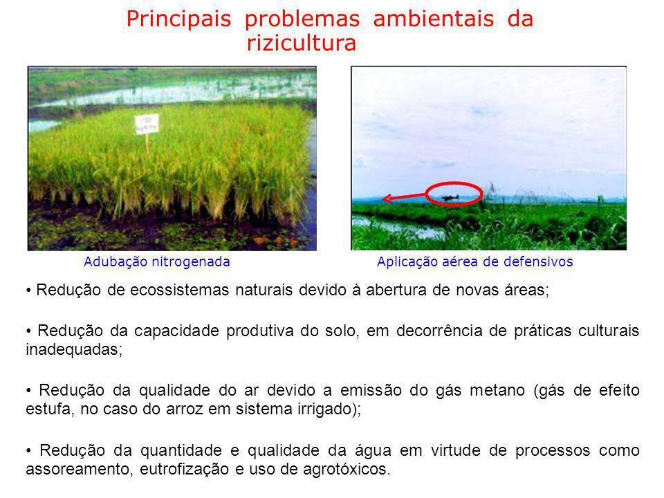Principais problemas ambientais da rizicultura Adubação nitrogenadaAplicação aérea de defensivos Redução de ecossistemas naturais devido à abertura de