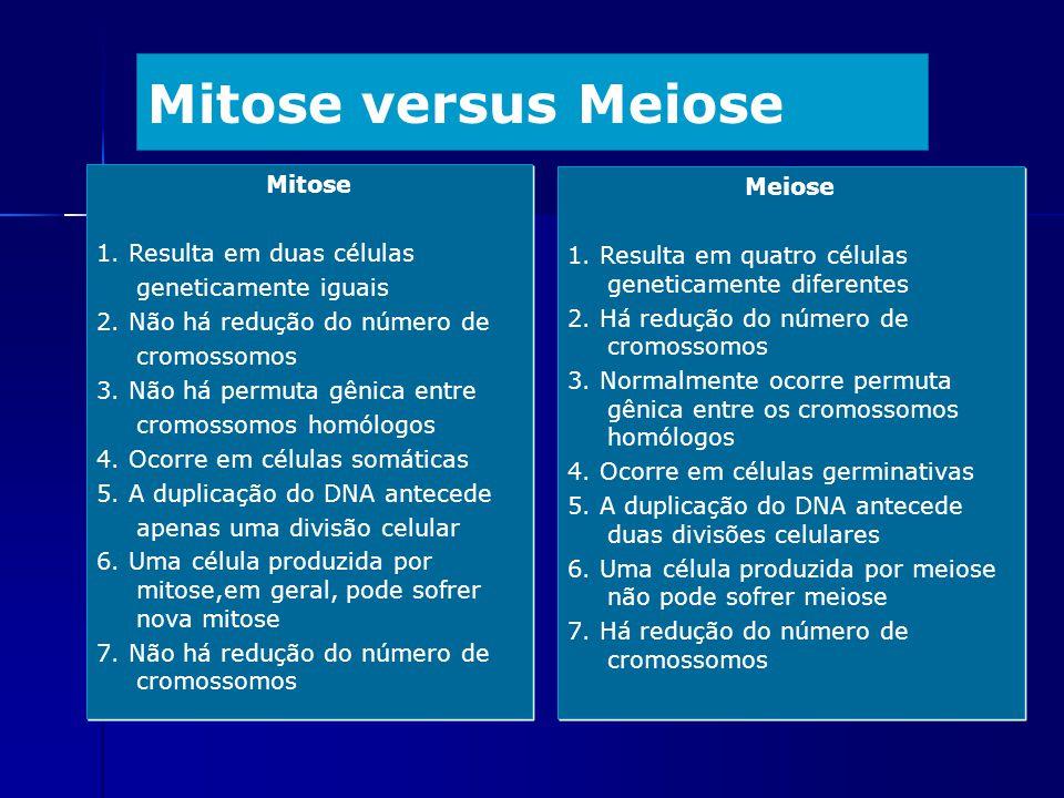 Mitose versus Meiose Mitose 1. Resulta em duas células geneticamente iguais 2. Não há redução do número de cromossomos 3. Não há permuta gênica entre