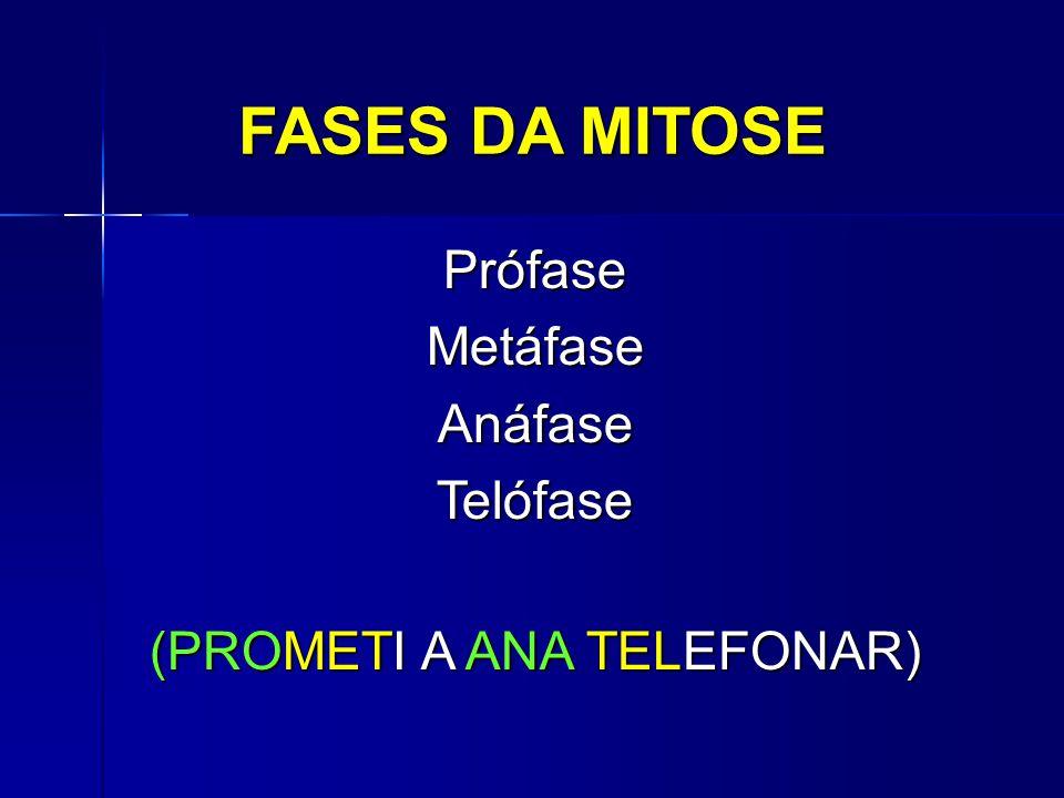 FASES DA MITOSE PrófaseMetáfaseAnáfaseTelófase (PROMETI A ANA TELEFONAR)