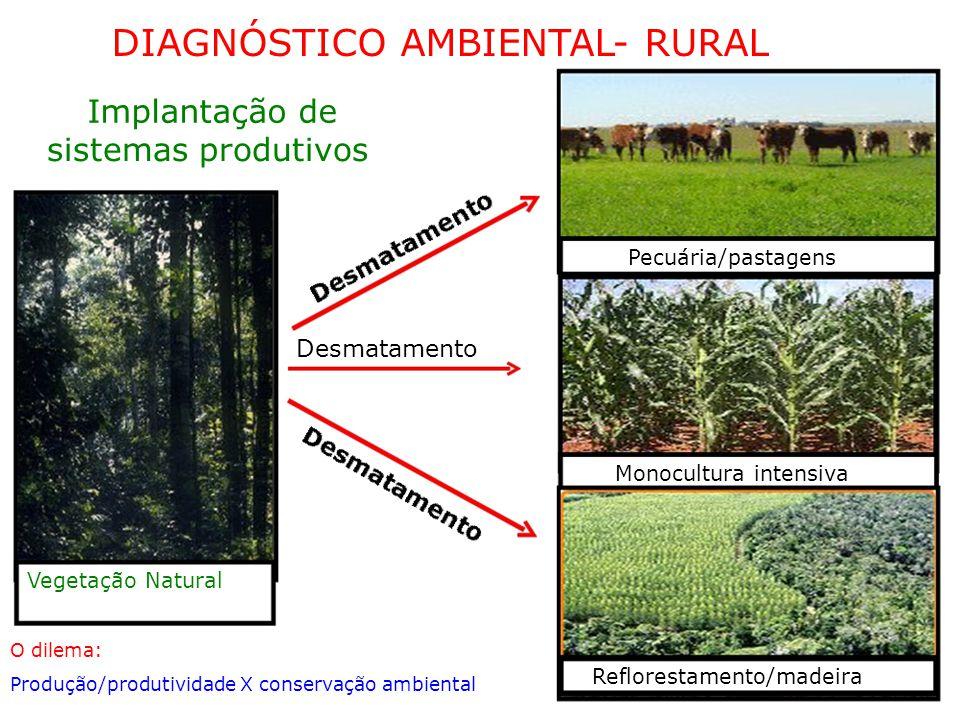 DIAGNÓSTICO AMBIENTAL- RURAL Implantação de sistemas produtivos Pecuária/pastagens Desmatamento Monocultura intensiva Vegetação Natural O dilema: Reflorestamento/madeira Produção/produtividade X conservação ambiental