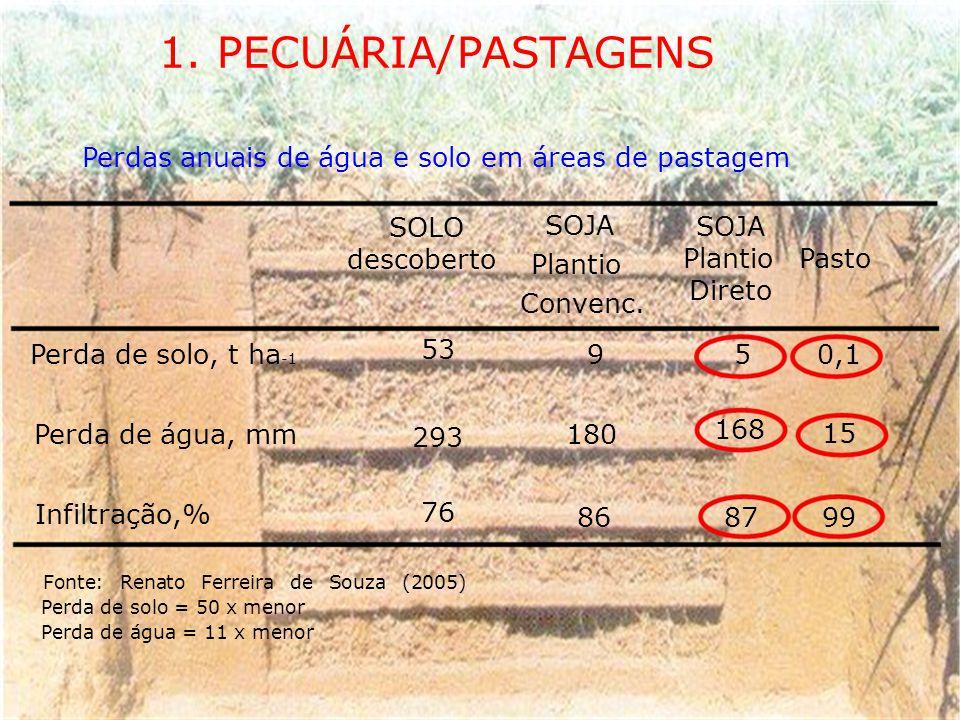 1. PECUÁRIA/PASTAGENS Perdas anuais de água e solo em áreas de pastagem SOLO SOJA descoberto PlantioPasto Plantio Direto Convenc. 53 Perda de solo, t