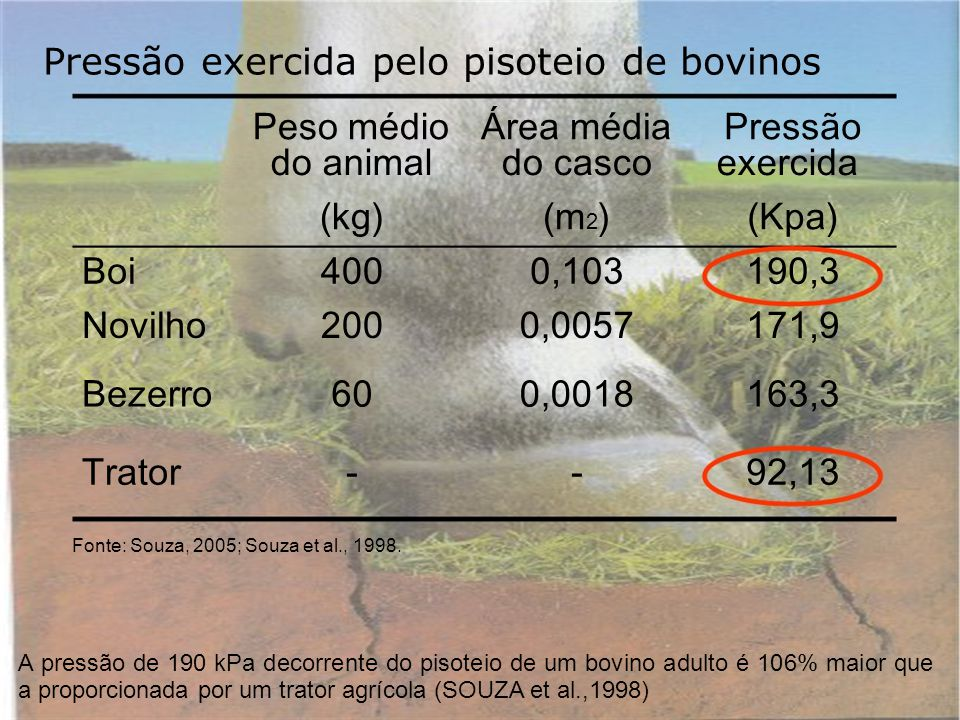 Pressão exercida pelo pisoteio de bovinos Peso médioÁrea médiaPressão do animaldo cascoexercida (kg)(m 2 )(Kpa) Boi4000,103190,3 Novilho2000,0057171,9 Bezerro600,0018163,3 Trator--92,13 Fonte: Souza, 2005; Souza et al., 1998.