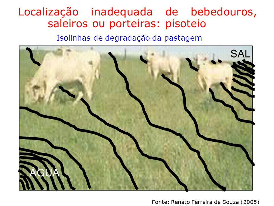 Localização inadequada de bebedouros, saleiros ou porteiras: pisoteio Isolinhas de degradação da pastagem SAL ÁGUA Fonte: Renato Ferreira de Souza (2005)