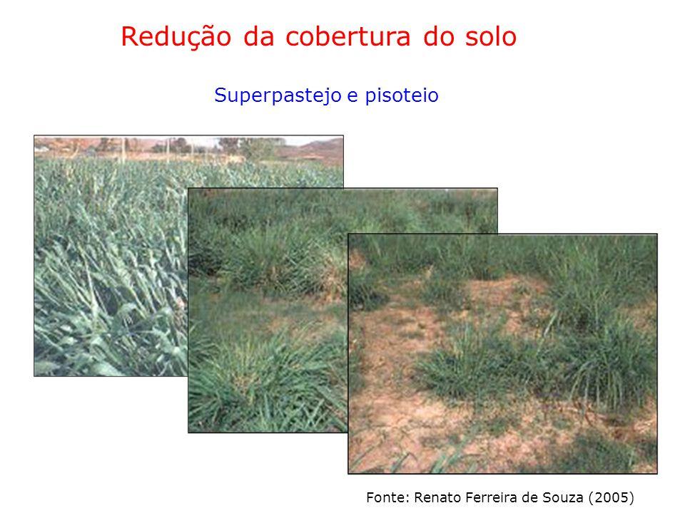 Redução da cobertura do solo Superpastejo e pisoteio Fonte: Renato Ferreira de Souza (2005)