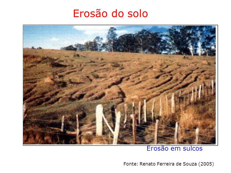Erosão do solo Erosão em sulcos Fonte: Renato Ferreira de Souza (2005)