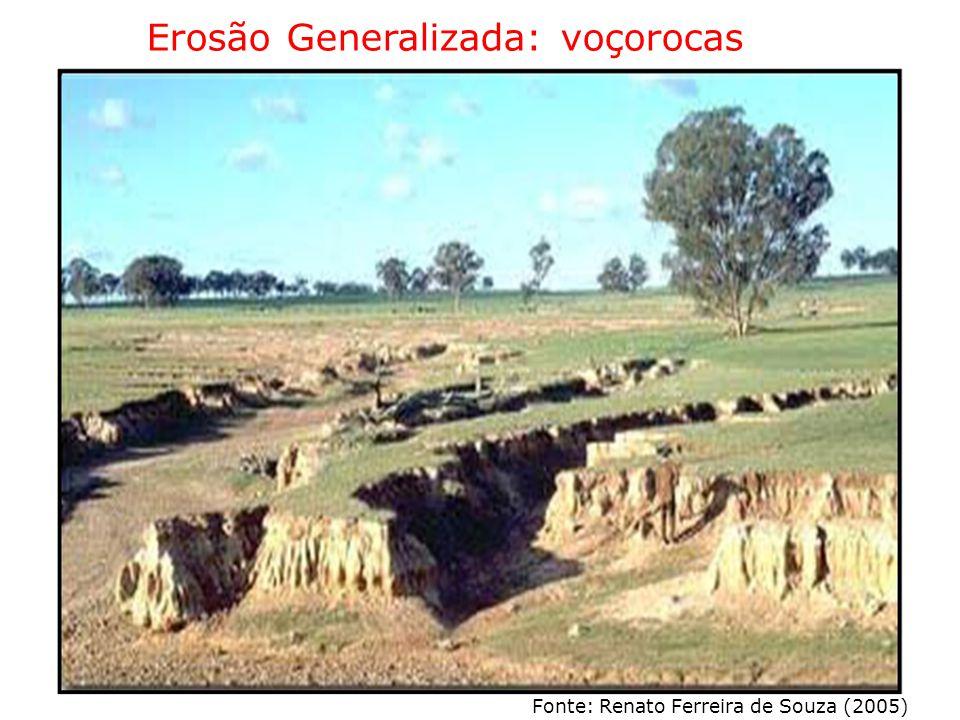 Erosão Generalizada: voçorocas Fonte: Renato Ferreira de Souza (2005)