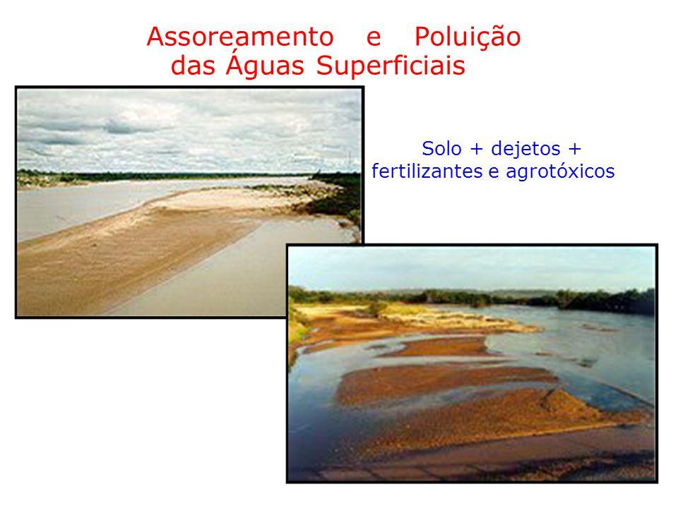 Assoreamento e Poluição das Águas Superficiais Solo + dejetos + fertilizantes e agrotóxicos