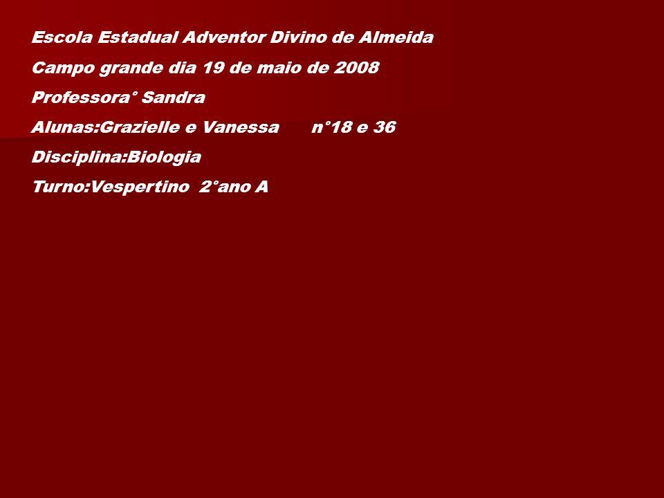 Escola Estadual Adventor Divino de Almeida Campo grande dia 19 de maio de 2008 Professora° Sandra Alunas:Grazielle e Vanessa n°18 e 36 Disciplina:Biologia Turno:Vespertino 2°ano A