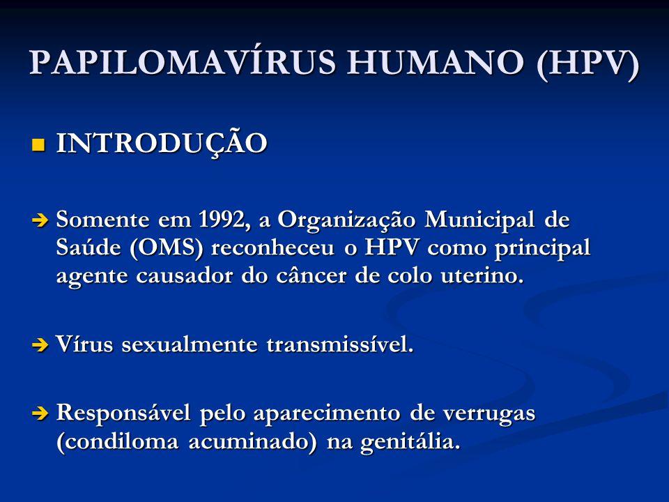 PAPILOMAVÍRUS HUMANO (HPV) INTRODUÇÃO INTRODUÇÃO Somente em 1992, a Organização Municipal de Saúde (OMS) reconheceu o HPV como principal agente causad