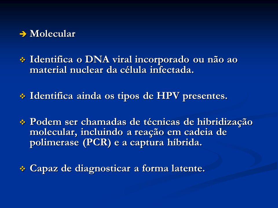 Molecular Molecular Identifica o DNA viral incorporado ou não ao material nuclear da célula infectada. Identifica o DNA viral incorporado ou não ao ma