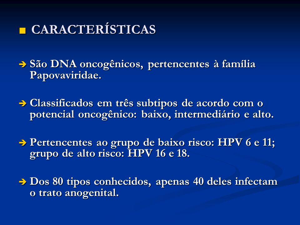 CARACTERÍSTICAS CARACTERÍSTICAS São DNA oncogênicos, pertencentes à família Papovaviridae. São DNA oncogênicos, pertencentes à família Papovaviridae.