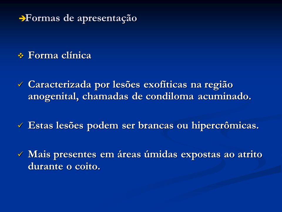 Formas de apresentação Formas de apresentação Forma clínica Forma clínica Caracterizada por lesões exofíticas na região anogenital, chamadas de condil