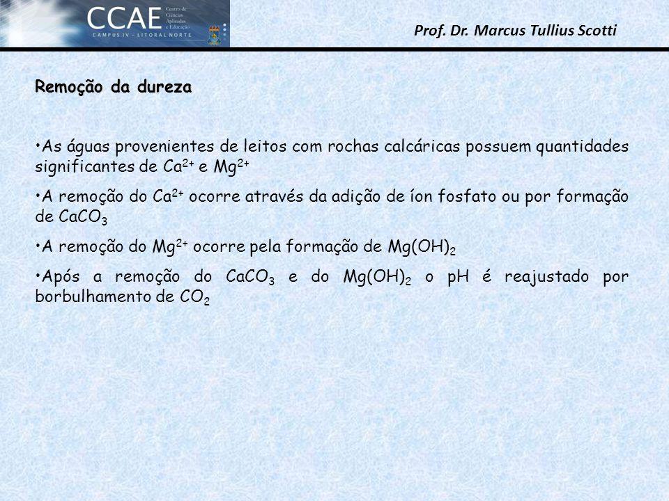 Prof. Dr. Marcus Tullius Scotti Remoção da dureza As águas provenientes de leitos com rochas calcáricas possuem quantidades significantes de Ca 2+ e M