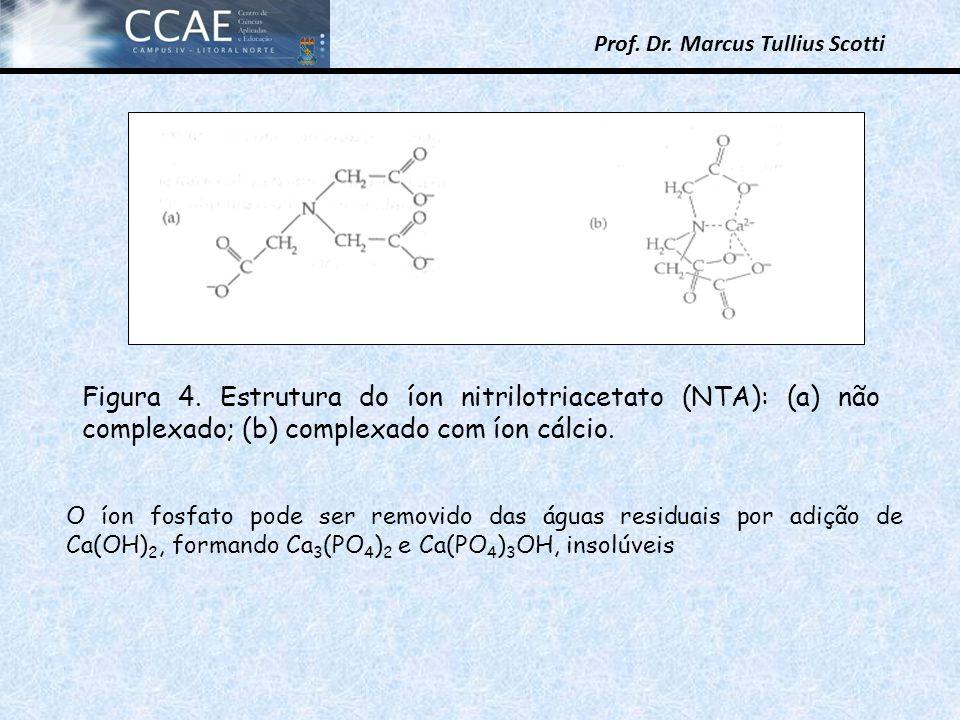 Prof. Dr. Marcus Tullius Scotti Figura 4. Estrutura do íon nitrilotriacetato (NTA): (a) não complexado; (b) complexado com íon cálcio. O íon fosfato p