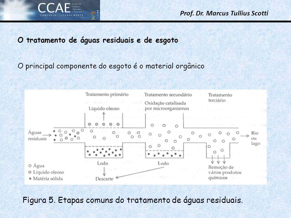 Prof. Dr. Marcus Tullius Scotti O tratamento de águas residuais e de esgoto O principal componente do esgoto é o material orgânico Figura 5. Etapas co