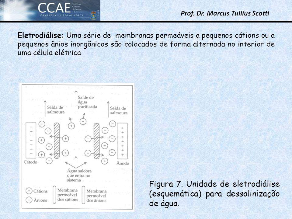 Prof. Dr. Marcus Tullius Scotti Eletrodiálise: Uma série de membranas permeáveis a pequenos cátions ou a pequenos ânios inorgânicos são colocados de f