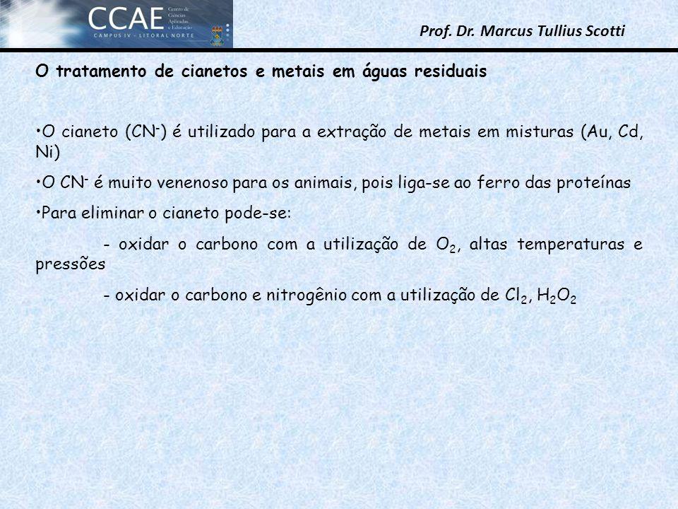 Prof. Dr. Marcus Tullius Scotti O tratamento de cianetos e metais em águas residuais O cianeto (CN - ) é utilizado para a extração de metais em mistur