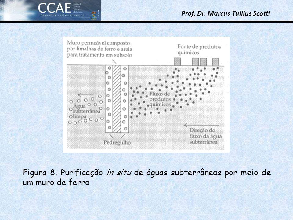 Prof. Dr. Marcus Tullius Scotti Figura 8. Purificação in situ de águas subterrâneas por meio de um muro de ferro