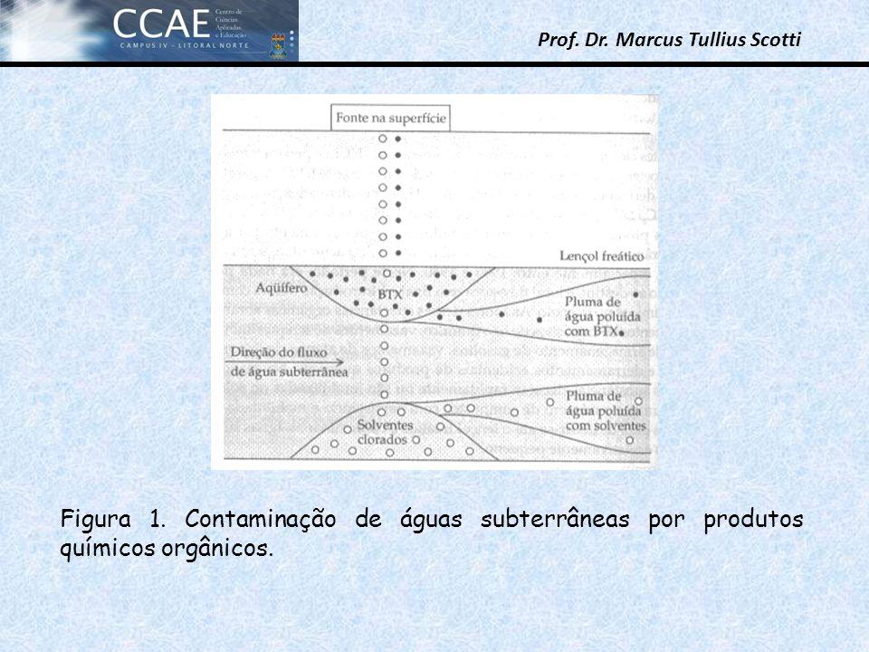 Prof. Dr. Marcus Tullius Scotti Figura 1. Contaminação de águas subterrâneas por produtos químicos orgânicos.
