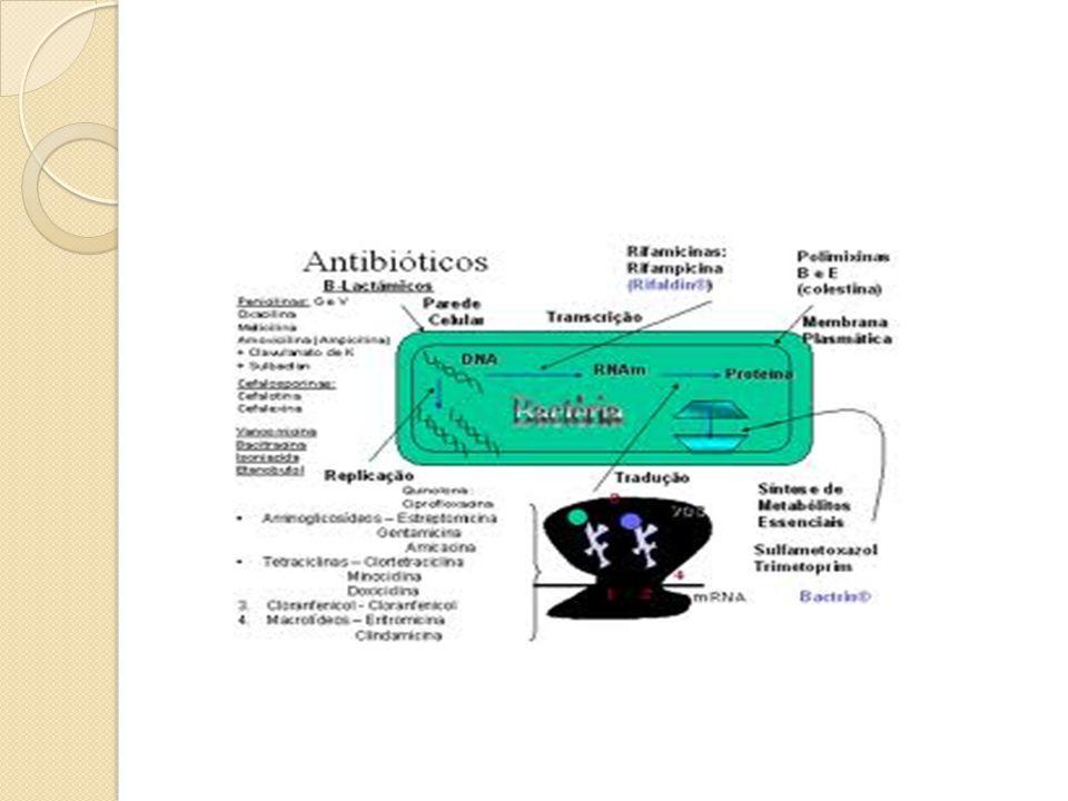 INIBIDORES DA SÍNTESE DA PAREDE CELULAR Célula humana não possui parede celular Ação bactericida β – lactâmicos Possuem em sua estrutura um anel β -lactâmico Penicilina Cefalosporina Carbapenemas Monobactâmicos Ác.