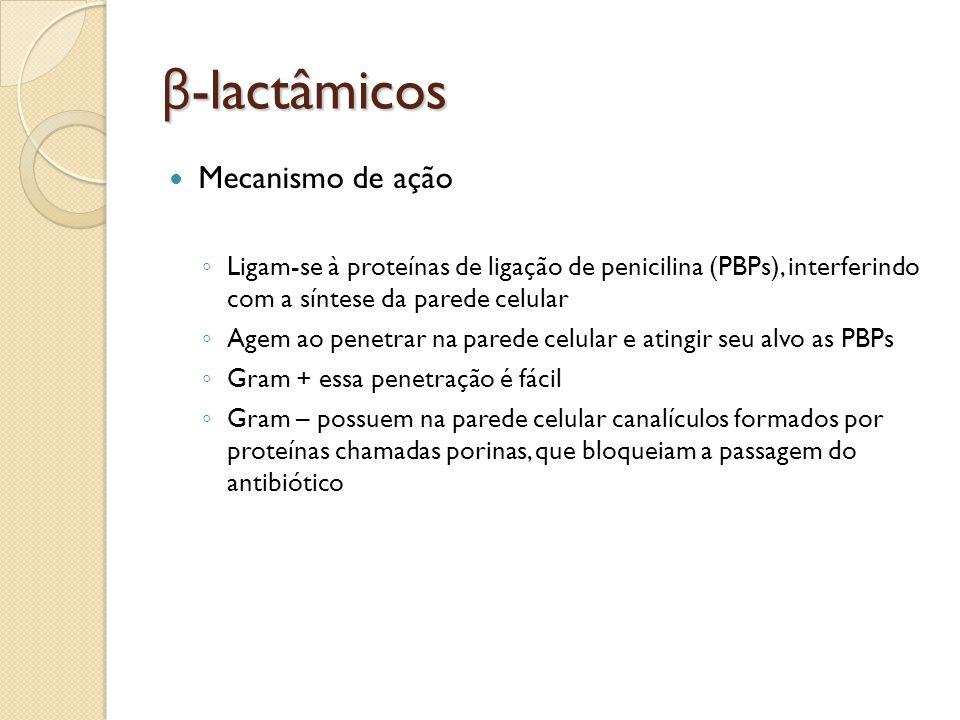 β -lactâmicos Mecanismo de ação Ligam-se à proteínas de ligação de penicilina (PBPs), interferindo com a síntese da parede celular Agem ao penetrar na