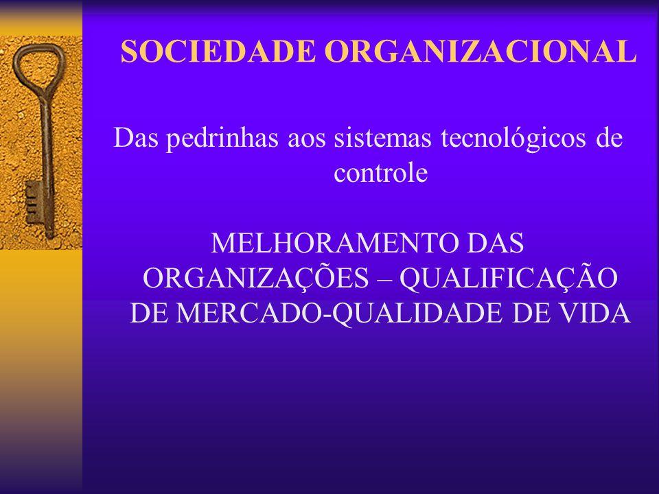 SOCIEDADE ORGANIZACIONAL Das pedrinhas aos sistemas tecnológicos de controle MELHORAMENTO DAS ORGANIZAÇÕES – QUALIFICAÇÃO DE MERCADO-QUALIDADE DE VIDA